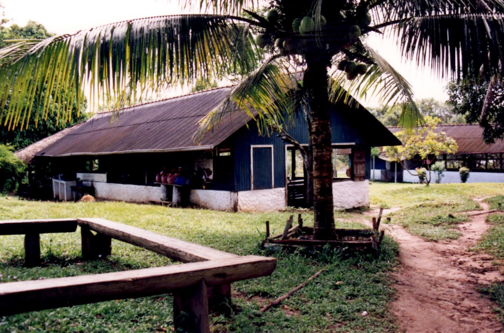 San Pedro (5)